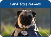 Lord Dog Names