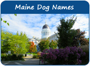 Maine Dog Names