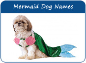 Mermaid Dog Names