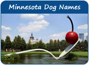 Minnesota Dog Names