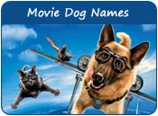 Movie Dog Names