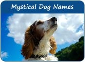 Mystical Dog Names