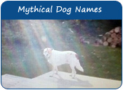 Mythical Dog Names