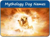 Mythology Dog Names