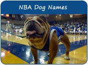 NBA Dog Names