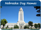 Nebraska Dog Names