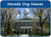 Nevada Dog Names