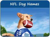NFL Dog Names