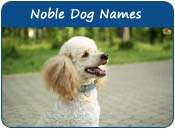 Noble Dog Names