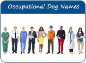 Occupational Dog Names