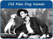 Old Man Dog Names