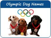 Olympic Dog Names