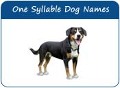 One Syllable Dog Names