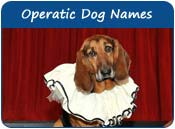 Operatic Dog Names