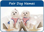 Pair Dog Names, Twins Dog Names