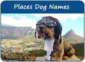 Places Dog Names