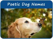 Poetic Dog Names