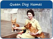 Queen Dog Names