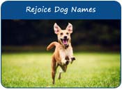 Rejoice Dog Names