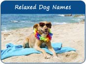 Relaxed Dog Names