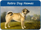 Retro Dog Names
