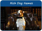 Rich Dog Names