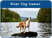 River Dog Names