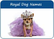 Royal Dog Names