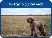 Rustic Dog Names