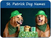 Saint Patrick Day Dog Names