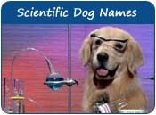 Scientific Dog Names