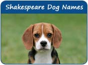 Shakespeare Dog Names