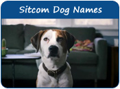 Sitcom Dog Names