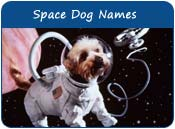 Space Dog Names