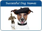 Successful Dog Names