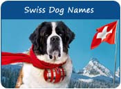 Swiss Dog Names