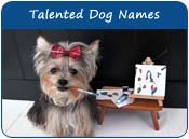 Talented Dog Names