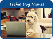 Techie Dog Names