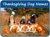 Thanksgiving Dog Names
