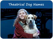 Theatrical Dog Names