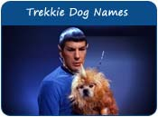 Trekkie Dog Names