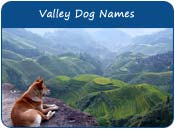 Valley Dog Names