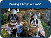 Vikings Dog Names