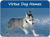 Virtue Dog Names