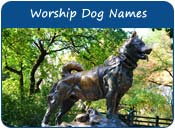 Worship Dog Names