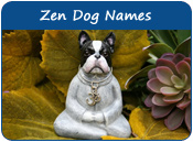 Zen Dog Names